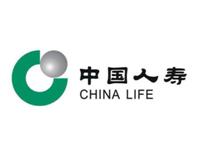中国人寿保险集团