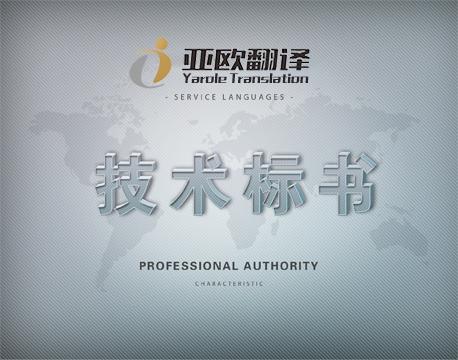 技术标书翻译